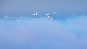 Wind turbines appearing above the mist in the Canon do Sil, Galicia, Spain. May 2018.  -  David Noton