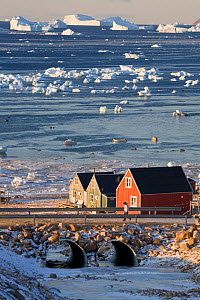 Man walking across a bridge and houses in the Inuit community of Qaanaaq, on the shore of Inglefield Bay. Northwest Greenland.  -  Bryan and Cherry Alexander