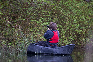 Wildlife photographer in coracle taking a picture, Norwich UK, May.  -  Robin Chittenden