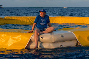 Professor Peter Harrison from Southern Cross University sitting on edge of nursery pool filled with coral larvae. Part of Coral IVF project to rear coral and replenish degraded sections of Great Barri...  -  Juergen Freund