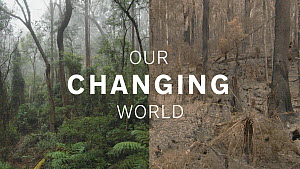 In the run up to COP26, we have launched a new showreel 'Our Changing World' which focuses on our environmental and conservation content.