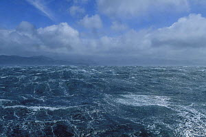 A 70 knot storm off Cape Horn, Chile. ^^^This area has a well-earned reputation for its mountainous seas and constant gales, caused by the build up of uninterrupted depressions circulating the Souther...  -  Onne van der Wal