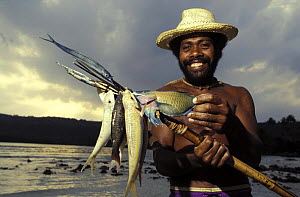 Fisherman on beach in Vanuatu, South Pacific with his catch on a spear, 1993. Model Released.  -  Onne van der Wal