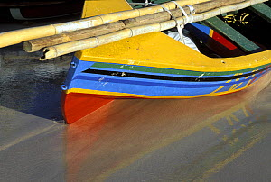 Bamboo canes strapped to a traditional brightly coloured fishing boat on the beach at the Grenada Sailing Festival, Grenada, Caribbean.  -  Onne van der Wal