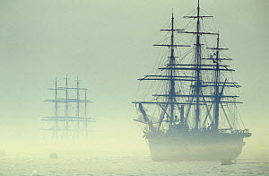 Two Tall ships in fog during Boston tall ships parade, Massachusetts, USA. ^Amerigo Vespucci^ is in the foregound.  -  Onne van der Wal