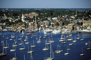 A full harbor and yachts moored in the marina at Bannister's Wharf beside the harbourside shopping centre, Newport, Rhode Island, USA.  -  Onne van der Wal