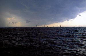 Yacht racing with approaching squall.  -  Onne van der Wal