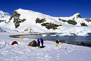 A research crew's tents pitched on the snow covered shore in Antarctica.  -  Onne van der Wal