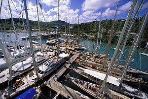 Masthead view of yachts moored in Falmouth marina during the Antigua Classics Race Week Regatta, 1998.  -  Onne van der Wal