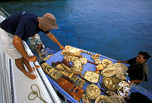 A local woman selling her crafts to the crew of a visiting yacht, Tonga, South Pacific.  -  Onne van der Wal