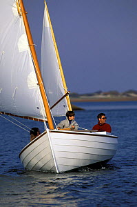 Family sailing a lapstrake yawl dinghy on Cape Cod, USA.  -  Onne van der Wal