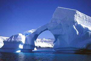A large archway in a naturally carved iceberg, Antarctic Peninsula. - Onne van der Wal