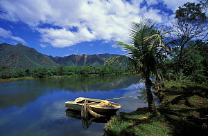 A small boat moored up on the banks of a river,  Grande Terre, New Caledonia, Melanesia  -  Roberto Rinaldi
