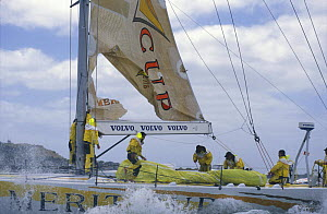 """""""Merit Cup"""" tears her main at the finish of the Whitbread Race leg to Auckland, 1997.  -  Rick Tomlinson"""