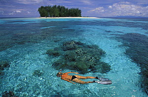 Snorkeling in clear waters infront of the small and uninhabited island of Dondola, Togian Islands, Sulawesi, Indonesia. Model released. - Roberto Rinaldi