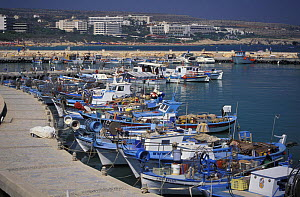 Fishing boats in a harbour just outside Aya Napa, Cyprus. - Roberto Rinaldi