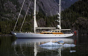 "118ft S&S designed superyacht, ""Timoneer"", passes by a seal on an iceberg in Fords Terror, Tongass National Forest, south-east Alaska.  -  Rick Tomlinson"