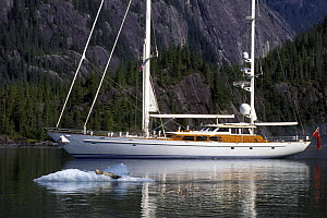 "118ft S&S designed superyacht, ""Timoneer"" passes by a seal Fords Terror, Tongass National Forest, south-east Alaska.  -  Rick Tomlinson"