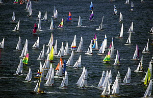 Fleet druing Round Texel race, 1998. It is the world's largest cat race with nearly 600 boats competing to sail fastest around the Dutch island of Texel in the North Sea.  -  Rick Tomlinson