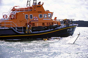 Torbay's Severn Class RNLI lifeboat rescues a Sonar during a blustery Cowes Week, 2001. ^^^ The lifeboat was brand new and still in the Solent for her commissioning period before going to her permanen...  -  Rick Tomlinson
