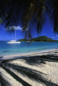 Cruising yachts anchored off the island of Mayreau near Tobago Cays in the Grenadines, Caribbean.  -  Rick Tomlinson