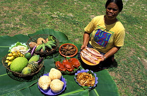 Woman with traditional local food: cooked crabs, fish, different types of bananas, pineaple, papaya, tapioca, soursop, taro, sweet potatoes etc. Palau.  -  Roberto Rinaldi