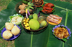 Traditional local Palau food: cooked crabs, fish, different types of bananas, pineaple, papaya, tapioca, soursop, taro, sweet potatoes, coconuts and more.  -  Roberto Rinaldi