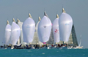 One design Farr 40 fleet tightly packed on the downwind leg at Key West Race Week, Florida, 2004. - Richard Langdon