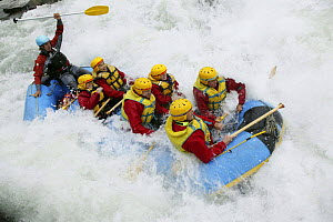 White water rafting, Shotover River, Queenstown, New Zealand.  -  Barry Bland