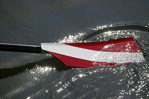 Rowing oar in the water, Olympic Games 2004, Athens, Greece. 14th August 2004.  Editorial Use Only.  -  Barry Bland