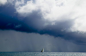 A small boat during a race in the Grenada Sailing Festival is engulfed by a heavy squall, Grenada, Caribbean.  -  Onne van der Wal