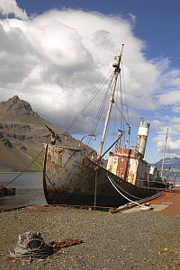 The abandoned wreck of the old whaling vessel ^Petrel^, Grytviken, South Georgia.  -  Onne van der Wal