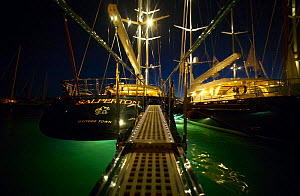 Superyachts lit up at night in Gustavia during the St Barts Bucket, Saint Barthelemy, Caribbean.  -  Onne van der Wal