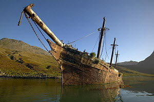 The wrecked coaling ship ^Bayard^ lying in Ocean Harbour, South Georgia. ^^^She was blown from her mooring during a severe gale in 1911 and is now a nesting ground for cormorants and petrels.  -  Onne van der Wal