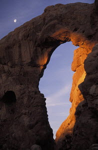 Sandstone archway of Turret Arch at sunrise, with the moon behind. Arches National Park, Utah, USA. - Ian Cameron