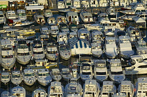Boats packed into the marina for the Newport Boat Show, Rhode Island, USA.  -  Onne van der Wal