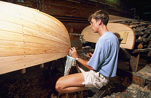 Building a traditional Beetle cat in Padanaram, Massachusetts. ^^^Designed in 1921 by Carl Beetle, these colourful gaff-rigged dinghies continue to be built and remain an active and popular one-design...  -  Onne van der Wal