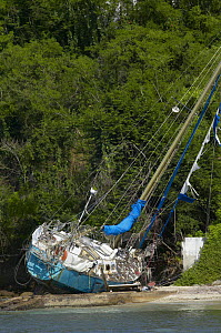A yacht swept up onto the shore during extensive hurricane damage on the island of Grenada, Caribbean.  -  Onne van der Wal