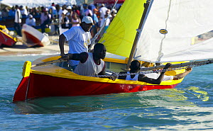 Locals sailing a traditional boat with a crowd watching from the shore, Grenada Sailing Festival 2005, Grenada, Caribbean.  -  Onne van der Wal