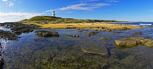 Rockpools and lighthouse at low tide, South Island, New Zealand.  -  Onne van der Wal