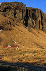 Small farm at the foot of the mountains where melting ice and snow form little water courses, Iceland. February 2005. - Lenaïc Gravis and Jocelyn Blériot