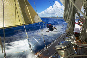 Crew member tripping the spinnaker during a race aboard J-Class ^Velsheda^ at Antigua Classic Yacht Regatta 2005, Caribbean. Property Released.  -  Onne van der Wal