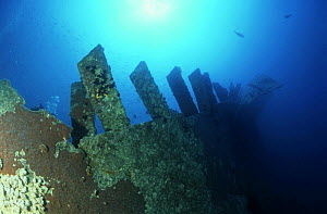 The wreck of the SS Thistlegorm, in the Straits of Gubal, Northern Red Sea. She was sunk by German bomber planes in World War II ^^^and has lain at the bottom of the sea for over sixty years. It is sa...  -  Angelo Giampiccolo