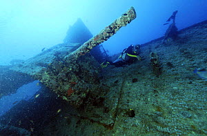 Diver beside cannon on the wreck of the SS Thistlegorm, a sunken war ship located in the Straits of Gubal, Northern Red Sea. She was sunk by German bomber planes in World War II ^^^and has lain at the...  -  Angelo Giampiccolo