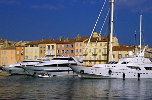 Luxury motorboats and yacht moored in the  harbour at St Tropez, France.  -  Roberto Rinaldi