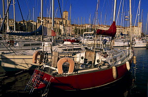 Boats moored in old port of Ciotat, South of France. - Roberto Rinaldi