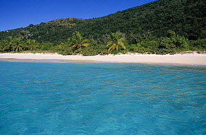 White Bay on Jost Van Dyke Island (JV Dyke), also known as Barefoot Island, British Virgin Islands (BVI) - Roberto Rinaldi
