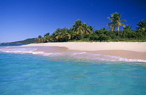 Sandy Cay on Jost Van Dyke Island (JV Dyke), British Virgin Islands (BVI) - Roberto Rinaldi