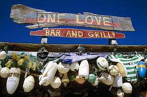 The One Love bar and grill in White Bay, Jost Van Dyke (JV Dyke) Island, British Virgin Islands (BVI) - Roberto Rinaldi
