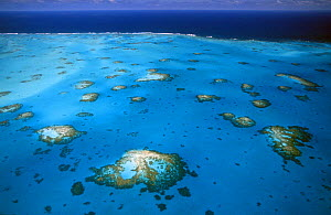Reef on the south of Anegada Island, the only reef-based island in the British Virgin Islands (BVI).  -  Roberto Rinaldi
